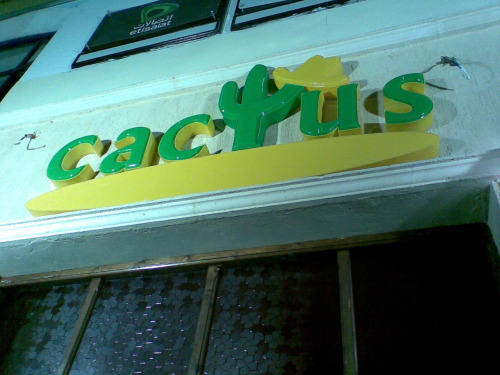catcus logo